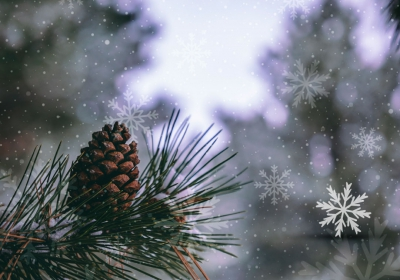 blog da savale com dicas para inverno